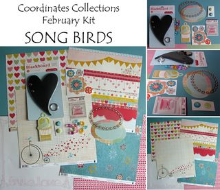 Song birds collage